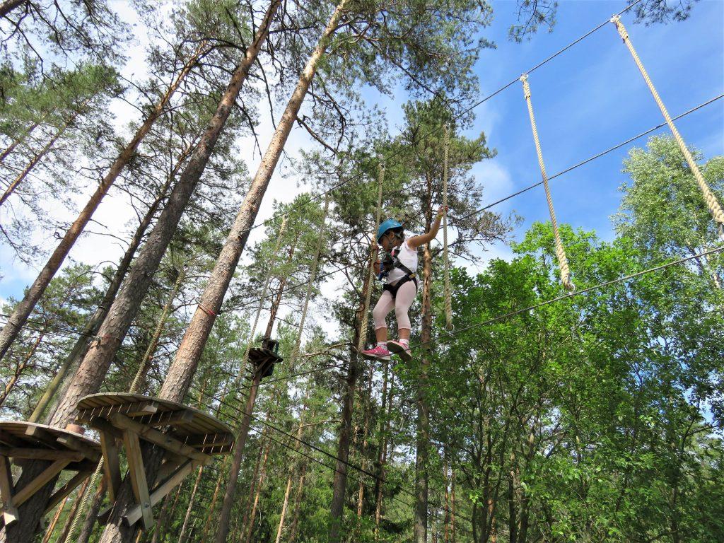 Balansekunst oppe mellom trærne