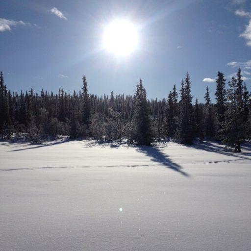 Solskinnsdag med snø, på Garli
