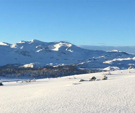 Utsikt over fjellheimen fra Garli