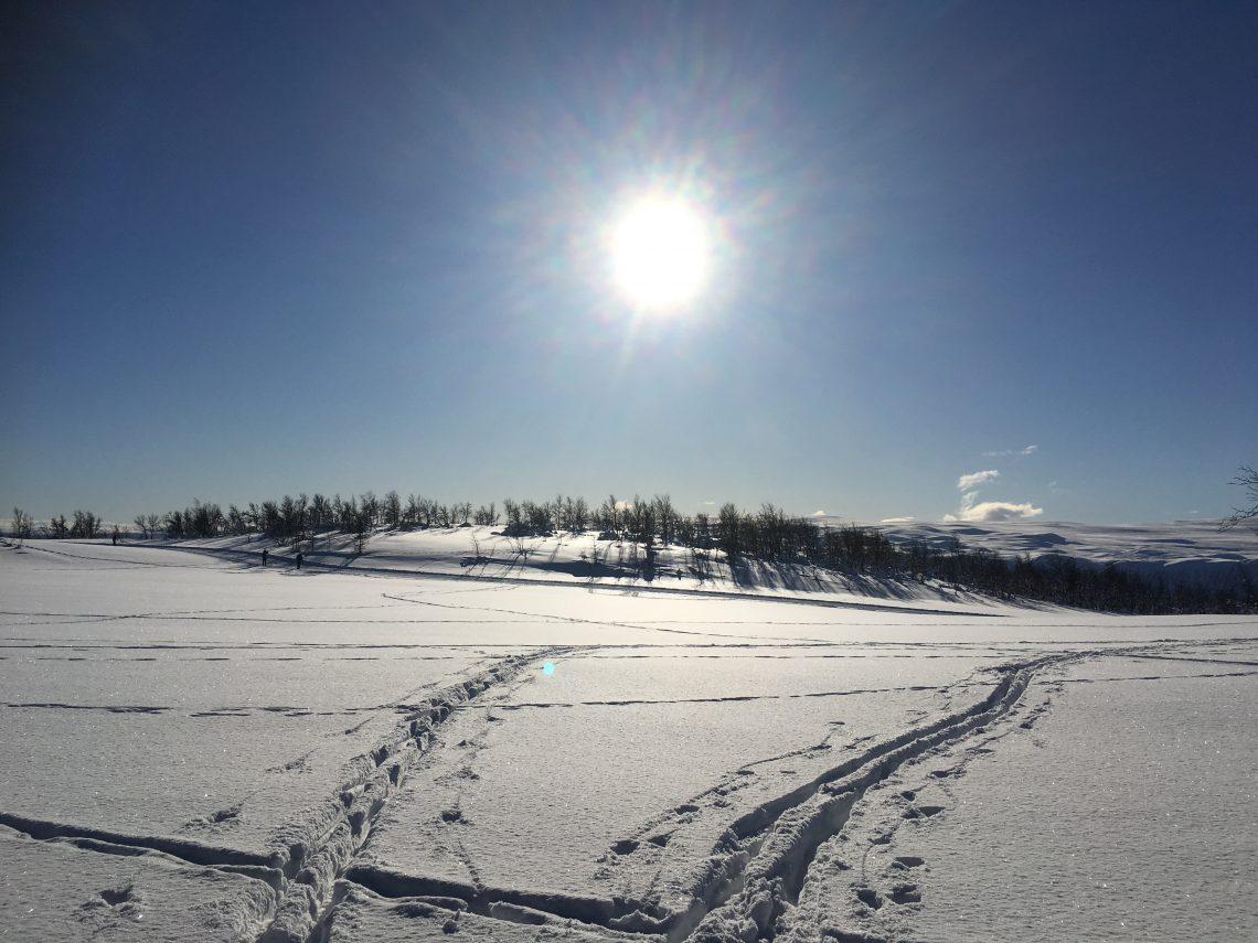 Å gå langrenn får vi minst 5 helsegevinster av - Sol fra skyfri himmel