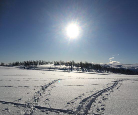 Skyfri himmel og godt skiføre, Beitostølen