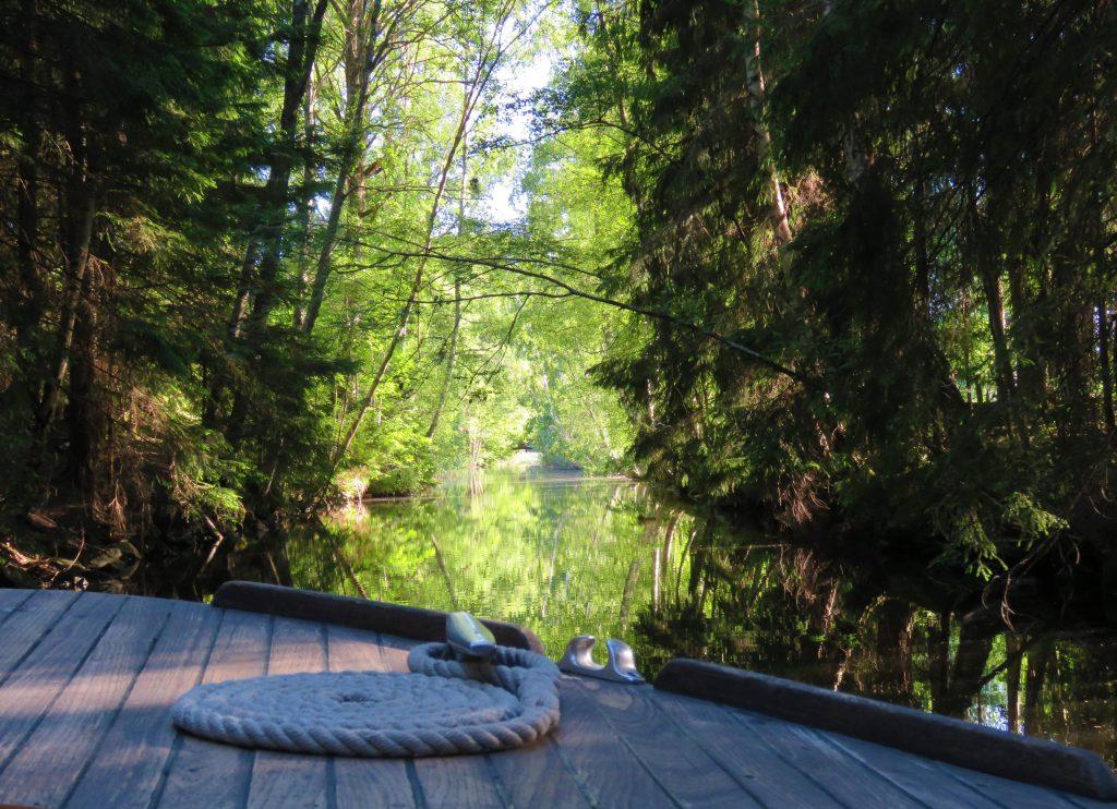 Trosle båtturer, Gränna. Her bøyer trærne seg tett over båten.