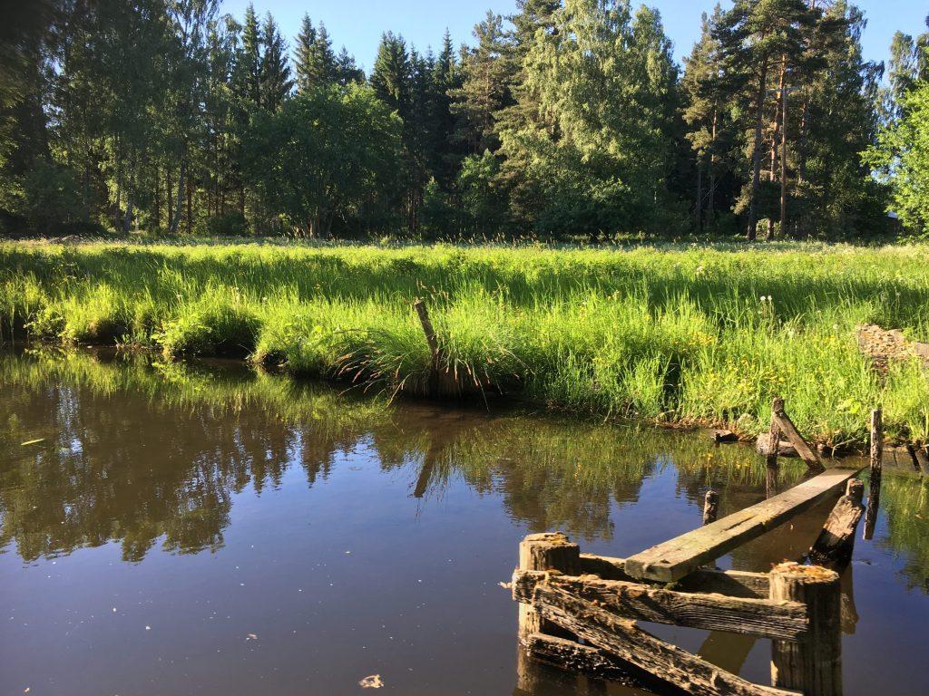 trosle båtturer i Gränna. vakker natur langs kanalen.