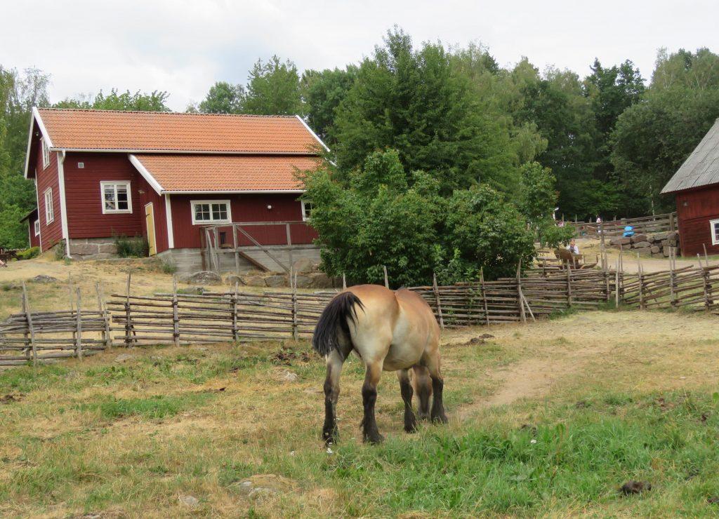 Hest i sitt rette miljø hos Emil i Lønneberget, Katthult