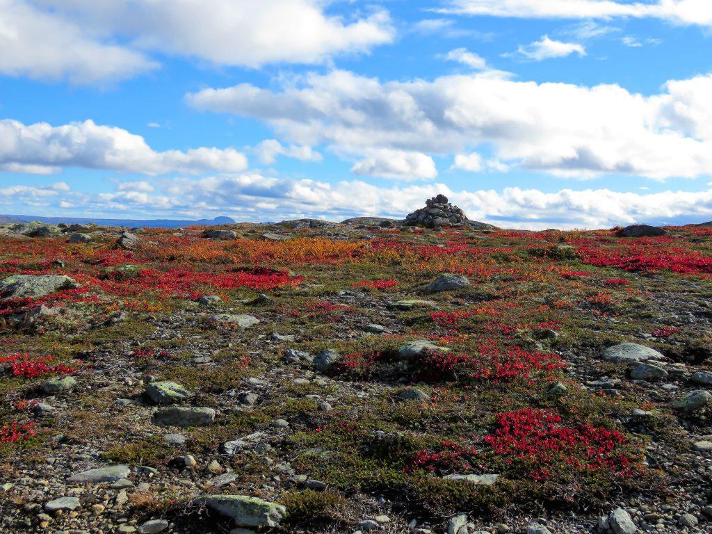 Beitostølen - høsttur i fjellet Fargespillet er enormt i september 2018
