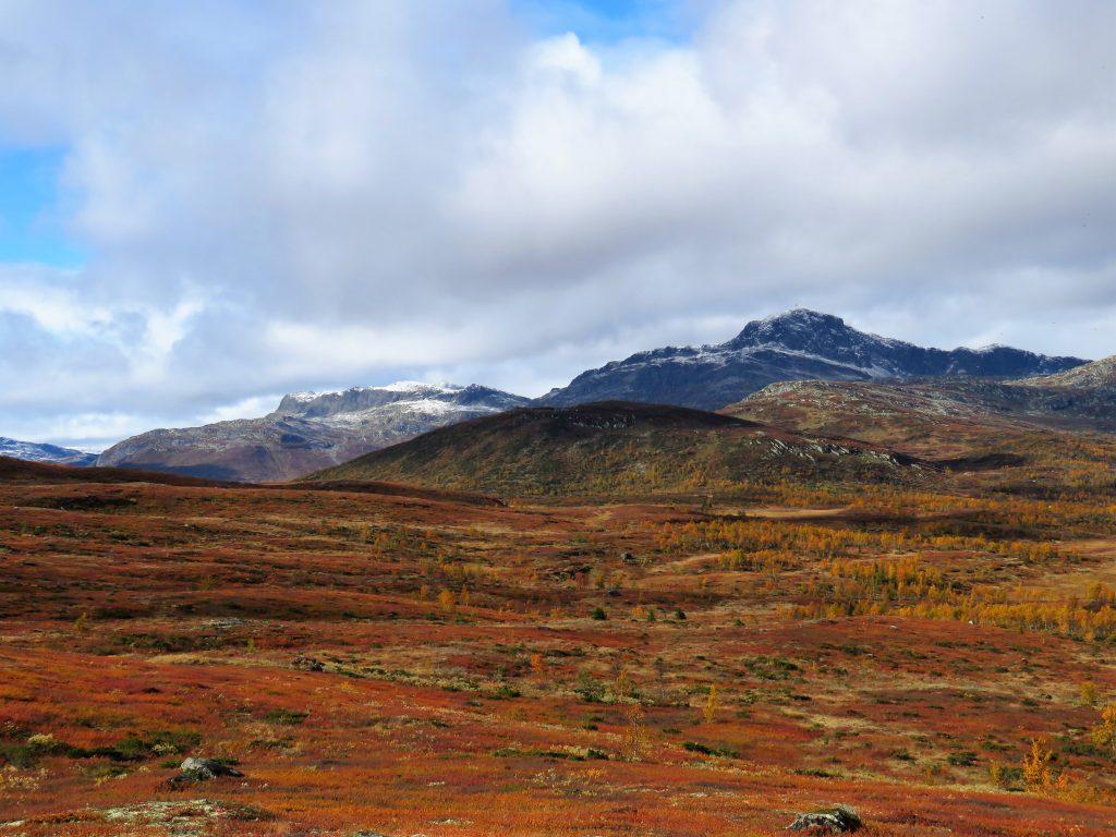 Beitostølen - høsttur i fjellet. Sjekk de fargene - utsyn mot Bitihorn