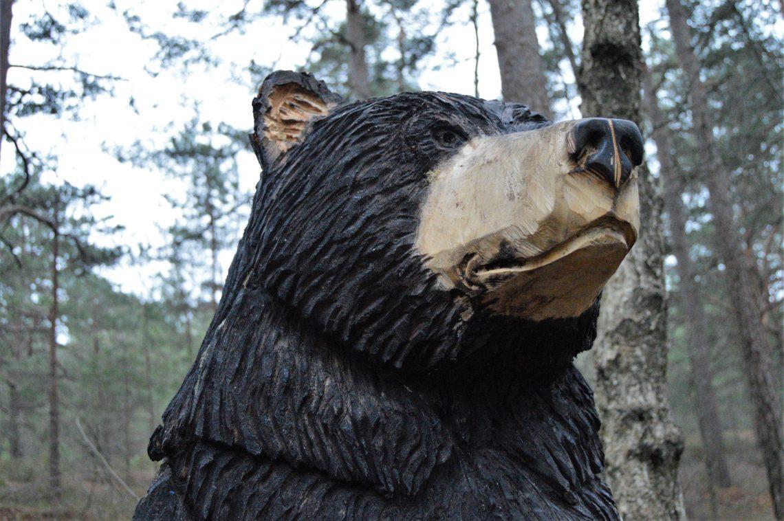 Nærbilde av utskåret bjørn i Fredrikstadmarka