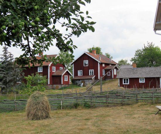 Ta barna med til Åsens by. En klynge av de gamle boligene i Åsens by. Urbantoglandlig