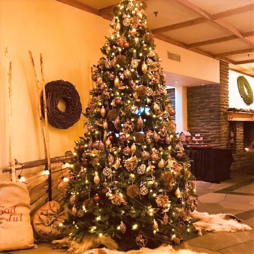 Reisen til Røros - en juledrøm blir virkelig - Resepsjonsområdet