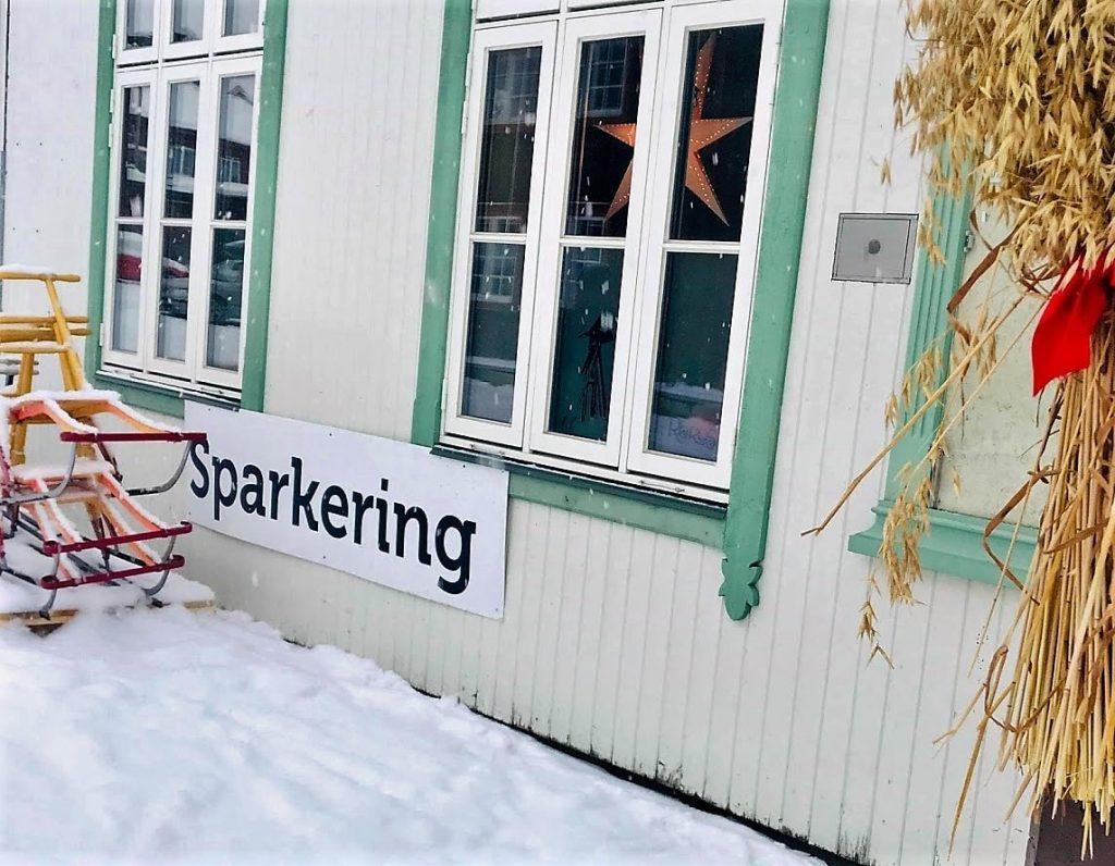 Reisen til Røros - en juledrøm blir virkelig. Sparkeringsplass