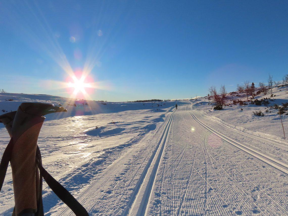 Supergli på felleski innover Garlislettene - Tor har festet stavene i snøen og venter på meg