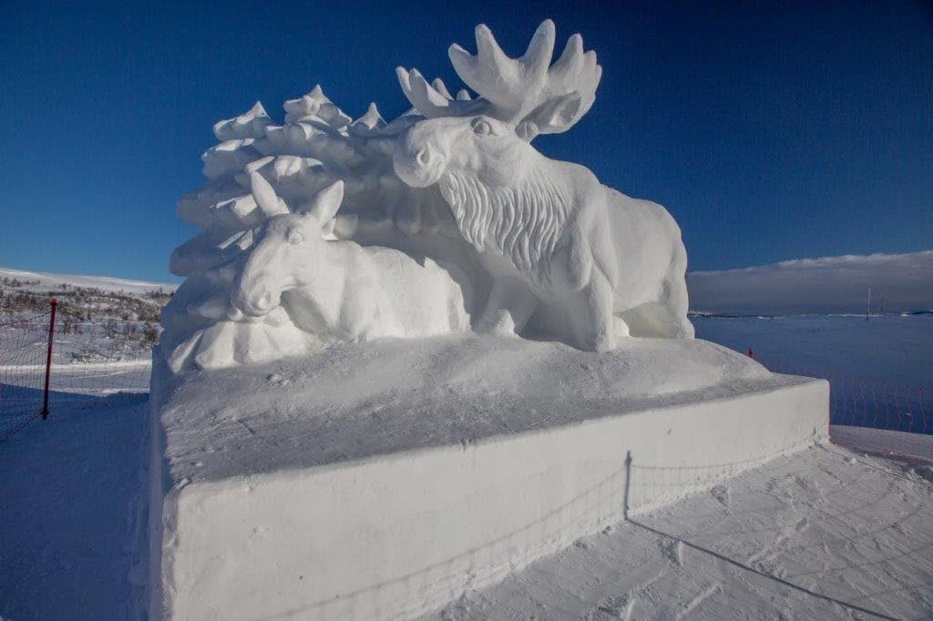 Snøskulpturene på Beitostølen - Elg, både med og uten gevir