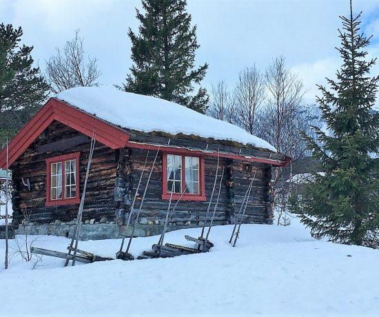 Ikke er født med ski på beina - Beitostølen - så mye vakre tømmerhytter å se på