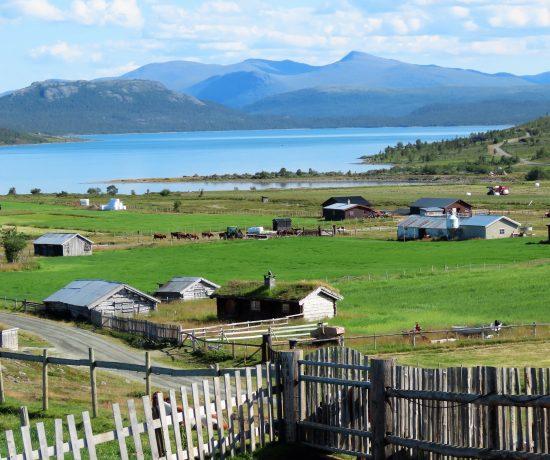 På Brimi Seter spiste vi skråpå-tå - for en flott utsikt over Tessvatnet IMG_2929 (2)-min