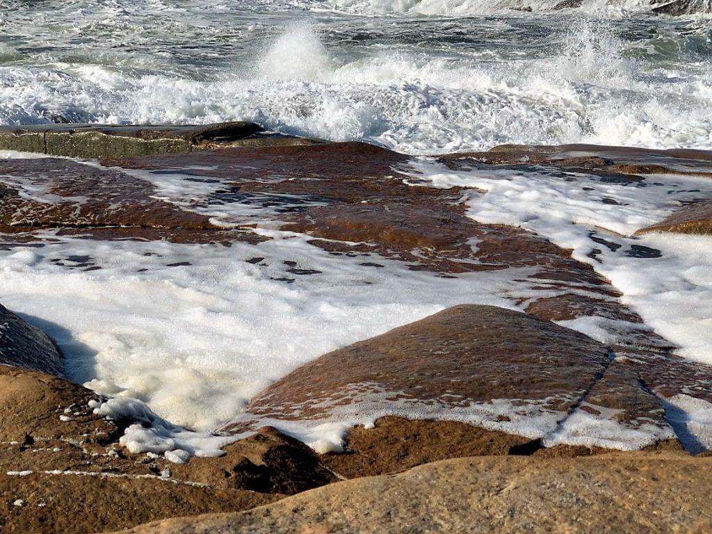 Med Vesterøy på Hvaler i ryggen, har du Amerika forut - det blåste hatter og høy denne dagen IMG_3629 (2)