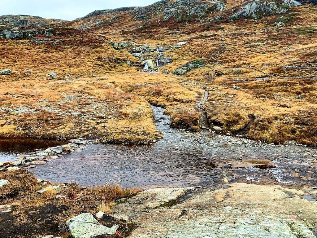 Synshorn 1475 MOH - Jotunheimen, en vakker dag i høstferien - her går du over for å følge stien videre mot toppen IMG_3987 (2)