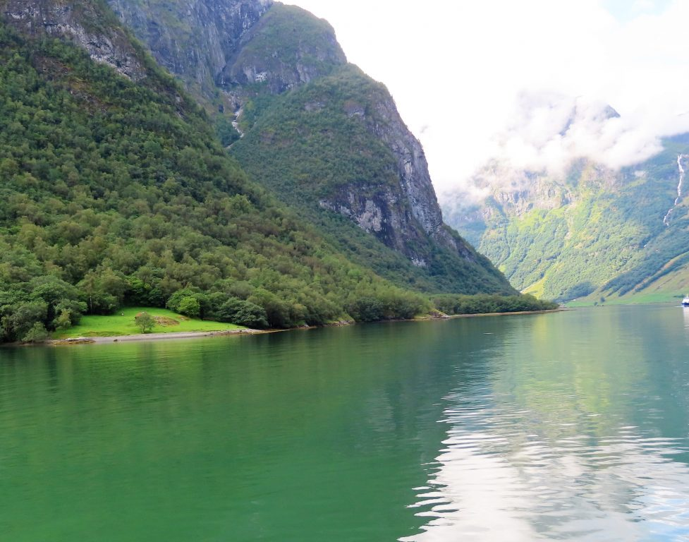 Miljøvennlig cruise på verdendensarvlistede Nærøyfjorden - det er grønt og frodig langs fjorden IMG_3264 (2)-min