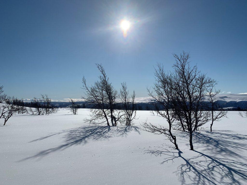 Bo godt året rundt på Beitostølen. En deilig solskinnsdag på Garli, Beitostølen