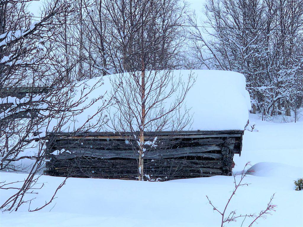 Eventyrlig vinterferie på Beitostølen - rusletur i fjellandsbyen