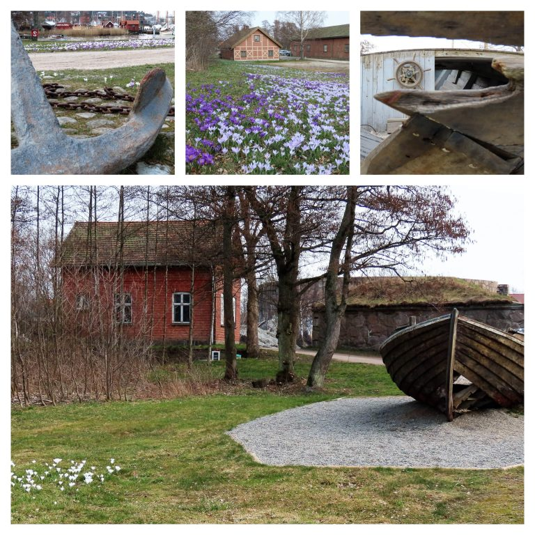 Fredrikstad fargelegger våren med krokus - kollasj med detaljer fra Isegran