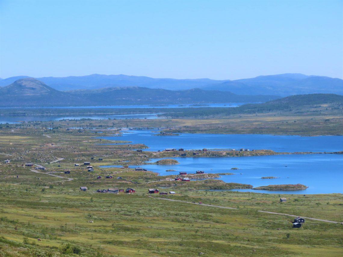 Vinstervatn byr på vakker natur og beitende dyr - Utsikten fra Rjupa