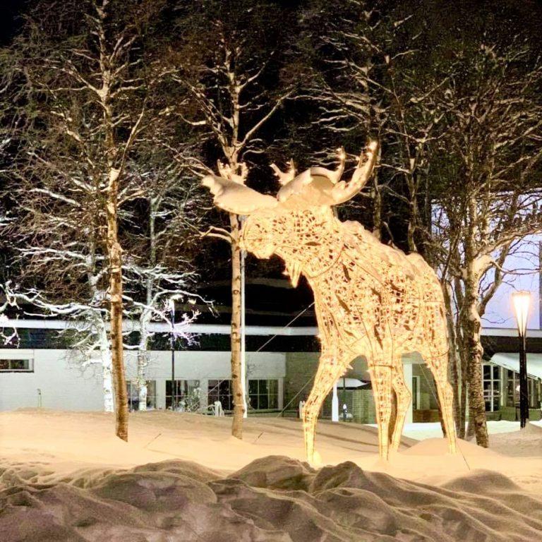 Ikke elg i solnedgang, men som en lysende elgskulptur
