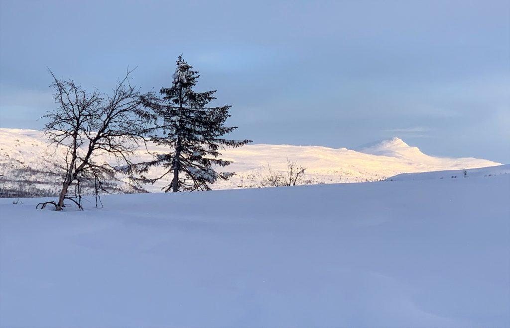 Magiske vinterdager på Beitostølen - flotte kontraster i fargene