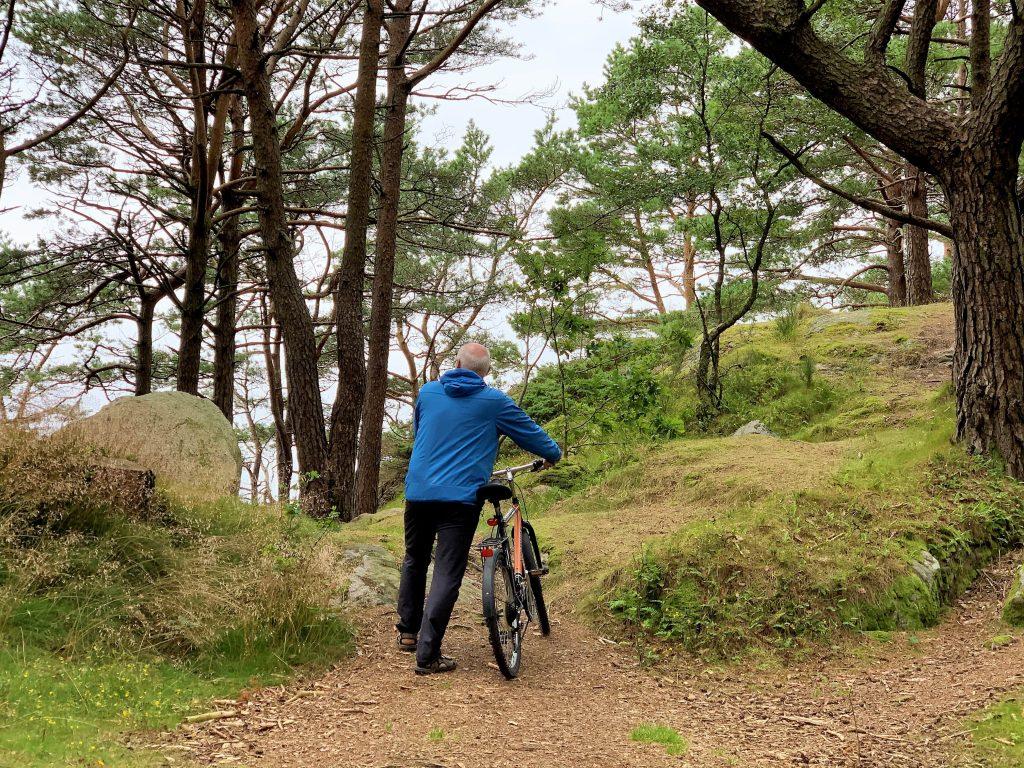 10 koselige ting å gjøre i Mandal - Norges sydligste by - på sykkeltur gjennom Furulunden